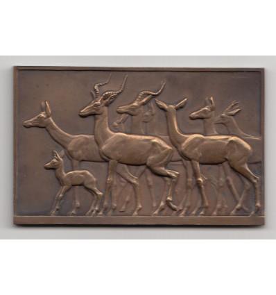 Troupeau d'antilopes par Fr. Thénot s.d.