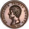 Consulat, Bonaparte Premier Consul, victoire de l'armée française à Marengo 1800